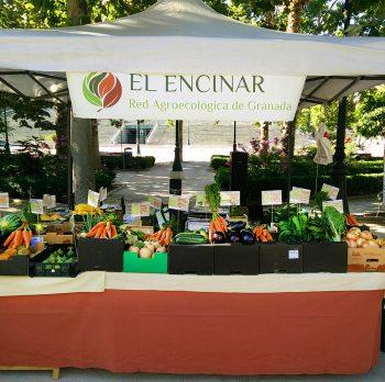 16 JUNIO | Ecomercado Norte