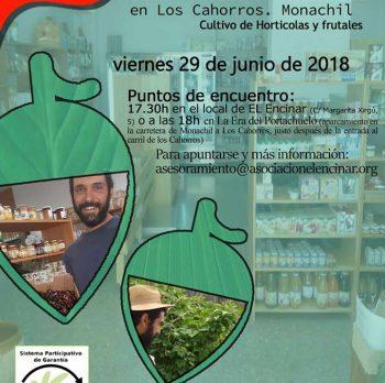 29 JUNIO | VISITA SPG
